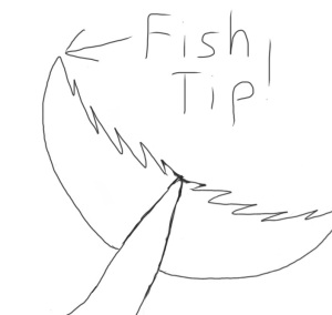Tip of a fish